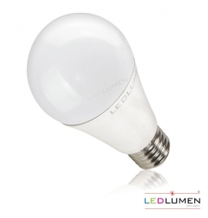 A60-AP E27 15W 230V 22x2835 LED CCD CW