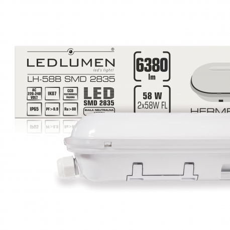 LH-58B 58W 6380lm LED 1200mm IP65 CCD NW